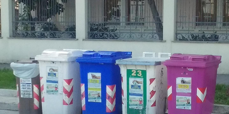 Box Per Bidoni Spazzatura per buttare la spazzatura si rischia di essere investiti