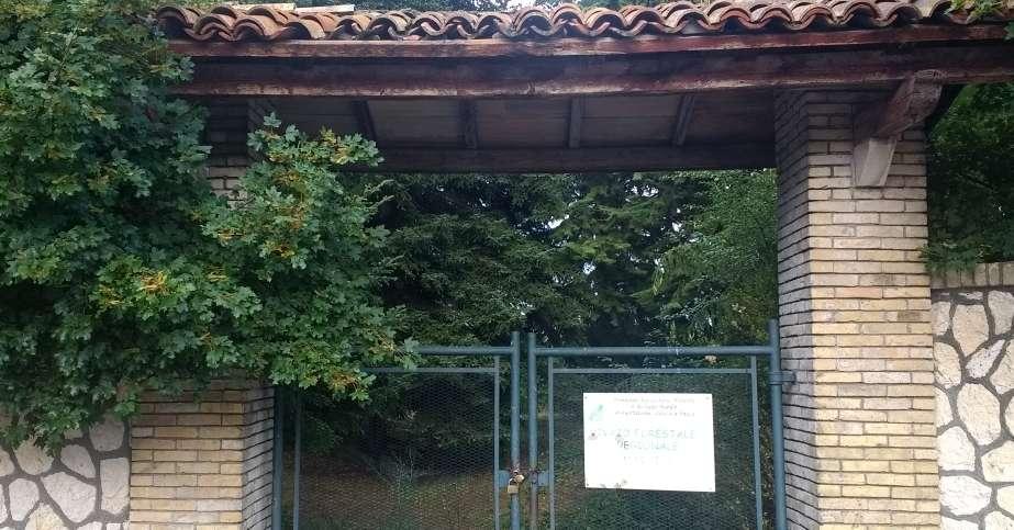Vivaio Forestale Abruzzo : Lex vivaio forestale torna al comune laquila il centro