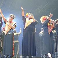 L'Harlem Gospel Choir in concerto