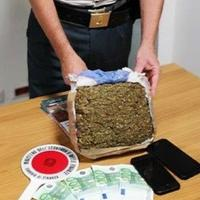 La marijuana sequestrata dalla guardia di finanza