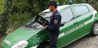 Carabiniere forestale